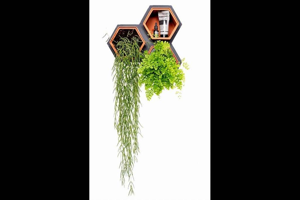 Zasprawą systemu Horticus ściany włazience może porastać zaprojektowany przez Ciebie ogród wertykalny.