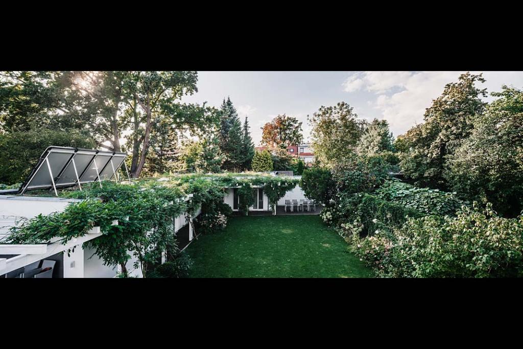 Willa na Bielanach z widokiem na zielony ogród i patio.
