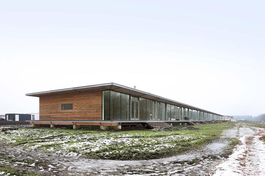 Szeregówka Oosterwold Co‑living Complex w Holandii, konstrukcja drewniana