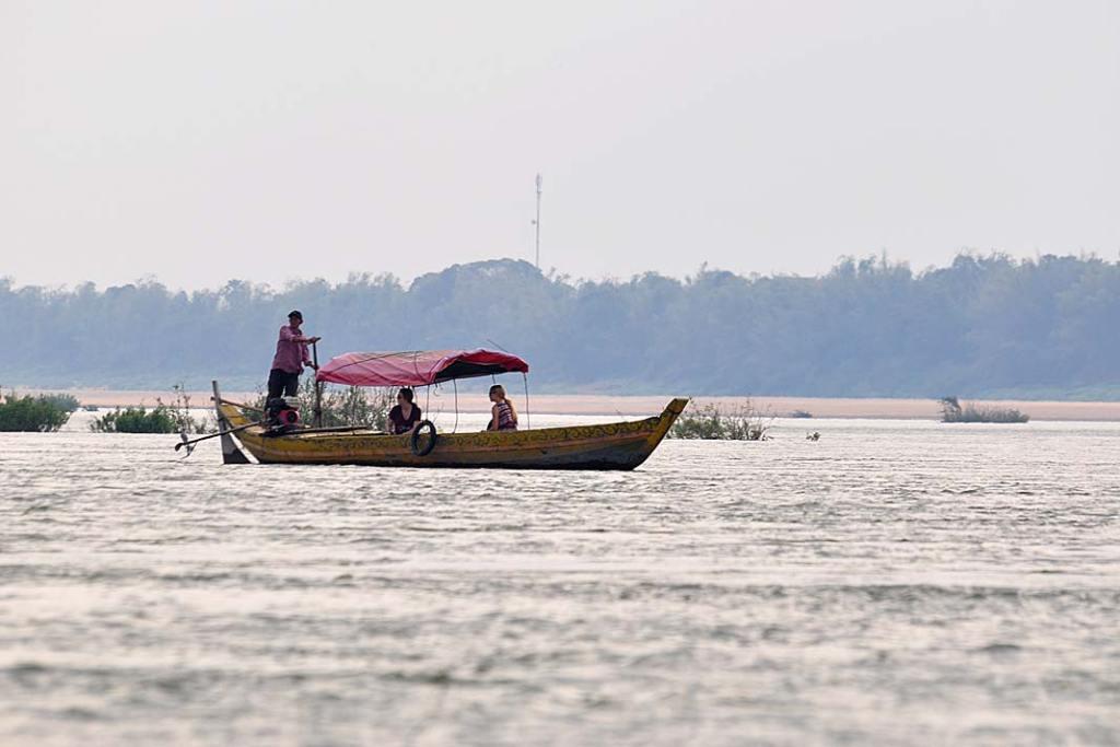 Oreczki krótkogłowe: przewodnik na łodzi pomaga w ich wypatrywaniu