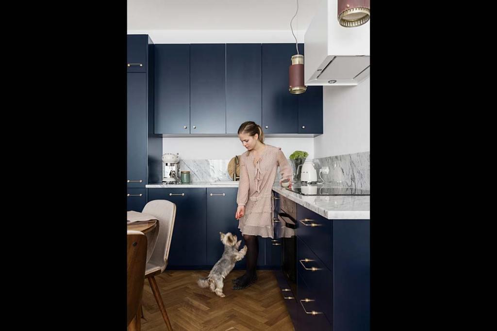 Zabudowa kuchni - granatowe fronty mebli pochodzą z katalogu FROPT. Projekt: Magda Milejska i FROPT