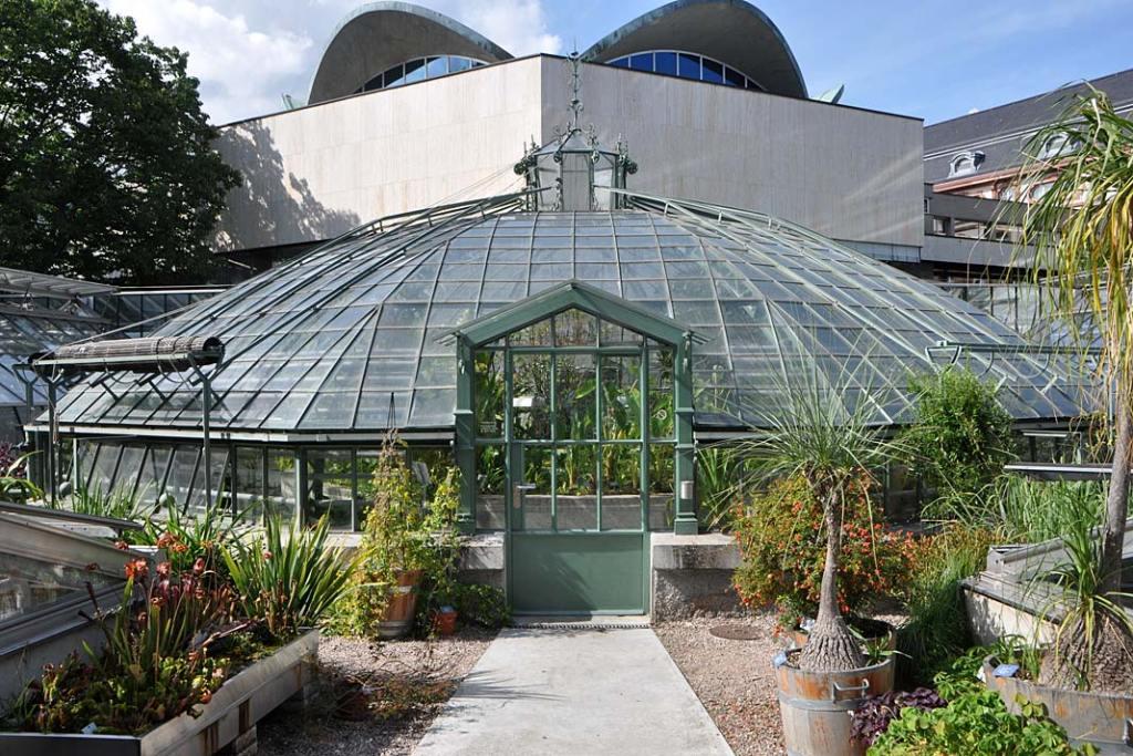 Uniwersytecki Ogród Botaniczny w Bazylei. Pawilon Dom Wiktorii
