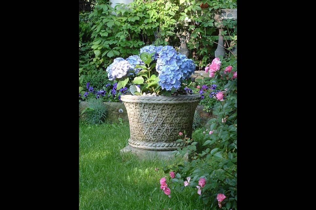 Wiosna w ogrodzie. Donica Cecylia z oferty Chronos