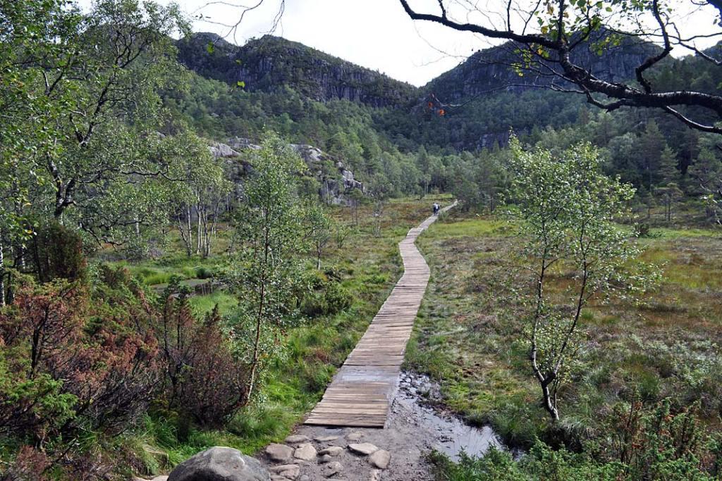 Drewniana kładka w jednym ze szwedzkich parków narodowych. Atrakcje Szwecji