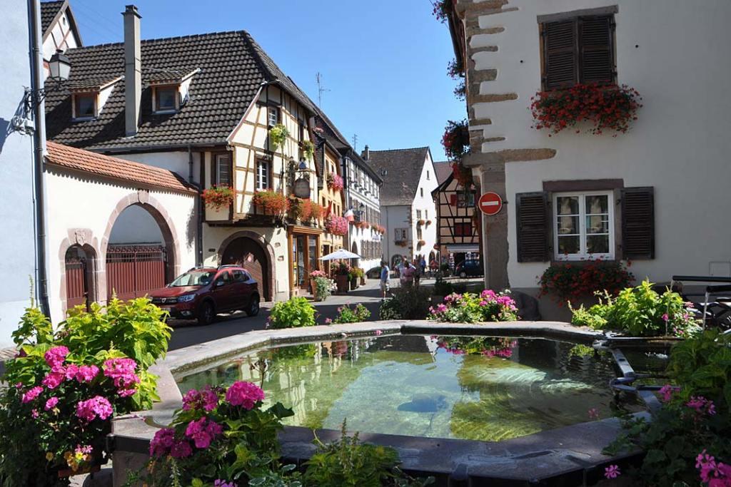 Miasta ogrody Alzacji. Fontanna ozdobiona pelargoniami i koleusami