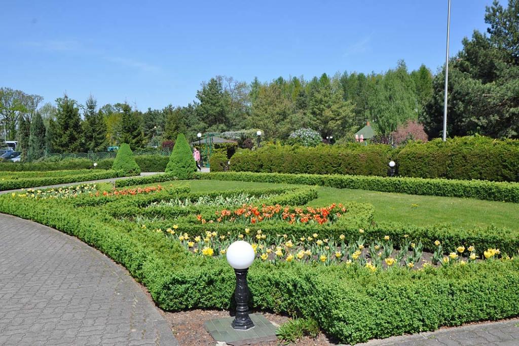 Piękne ogrody. Nasadzenia z kwiatów cebulowych w sanktuarium w Licheniu