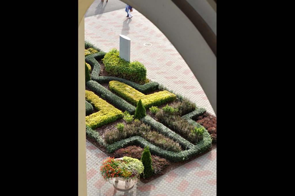 Piękne ogrody. Nasadzienia z bukszpanu i roślin iglastych w sanktuarium w Licheniu