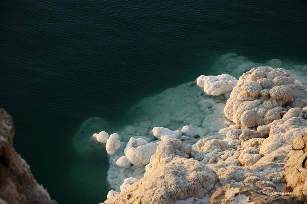 Wykwity soli nabrzegu Jeziora (Morza) Martwego