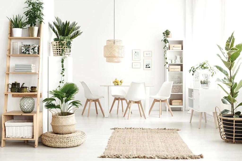 Baumit Ionit Color - farba poprawiająca jakość powietrza w mieszkaniu
