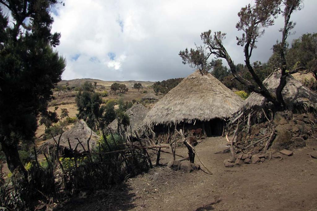 Dachy górskich chat Semien pokryte są trawą