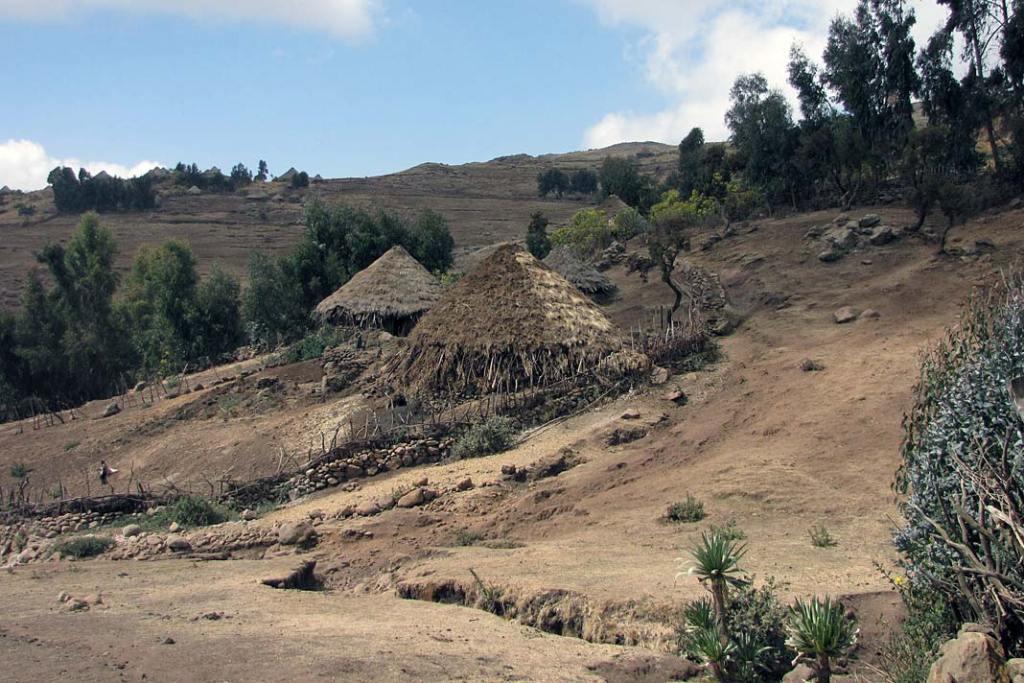 Dachy górskich chat pokrywa trawa