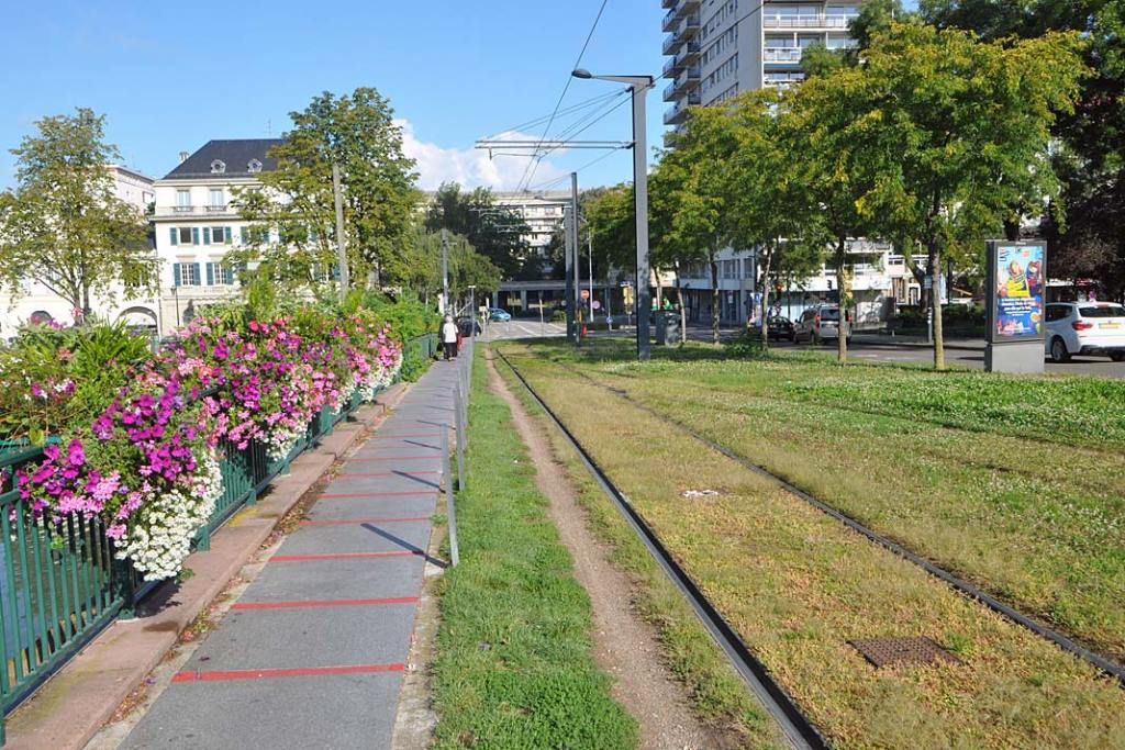 Miluza, torowisko tramwajowe wkomponowane w trawnik