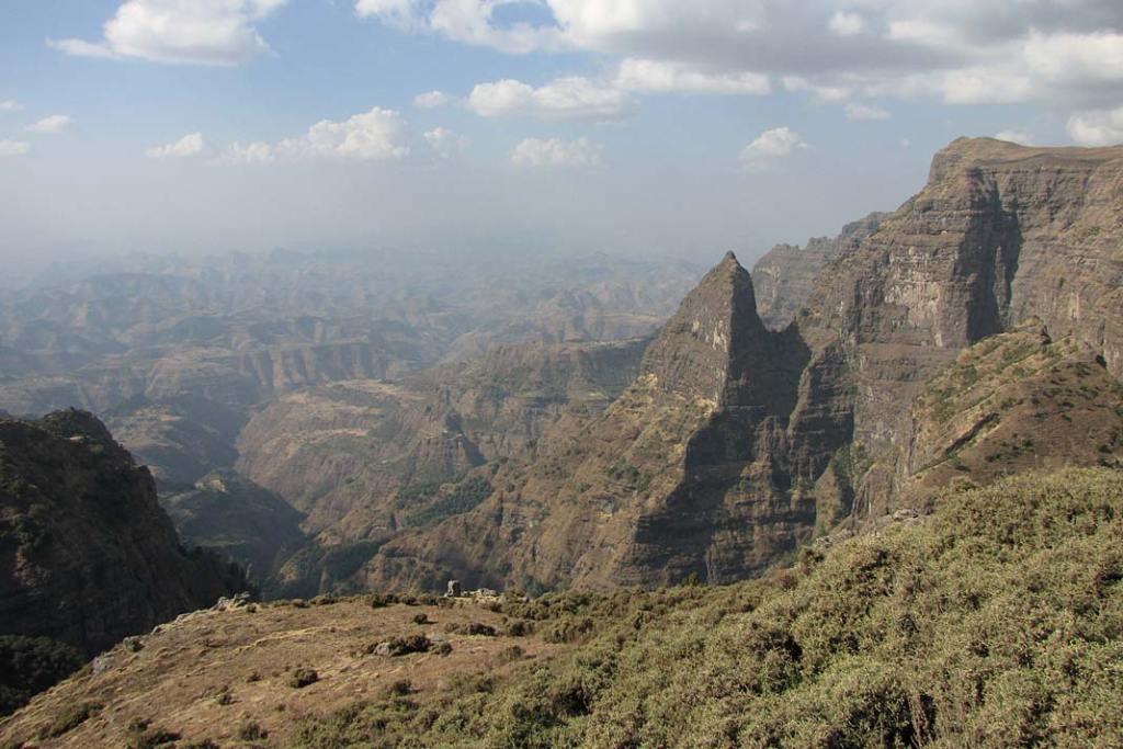 Niedostępne tereny gór Semien zamieszkują dżelady, pawiany płaszczowe, wilki abisyńskie, koziorożce, pantery i sępy