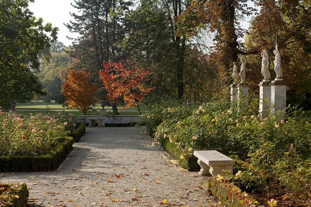 Ogród Różany zachwyca kolorami i zapachami do samej jesieni