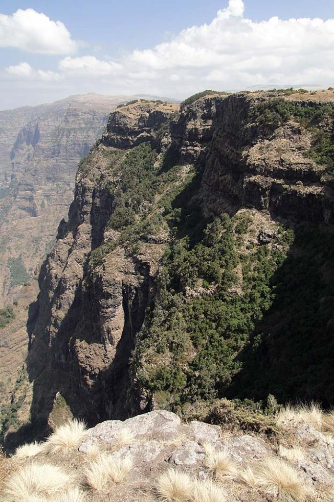 Kraina zamieszkiwana przez dżelady - płaskowyż Semien znajduje się w północnej części Etiopii