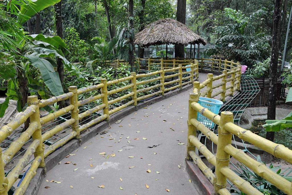 Most prowadzący dotzw. ogrodu krokodyli