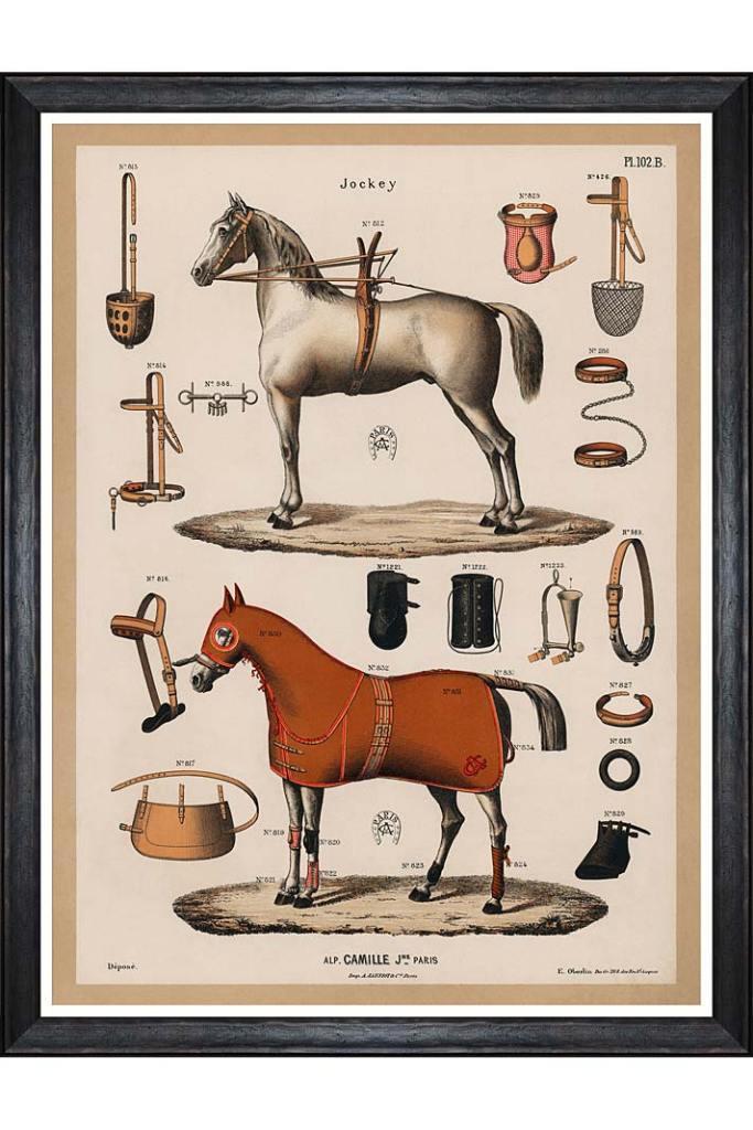 Obraz The Riding Equipment z Mindthegap, dla tych których pasją jest jeździectwo