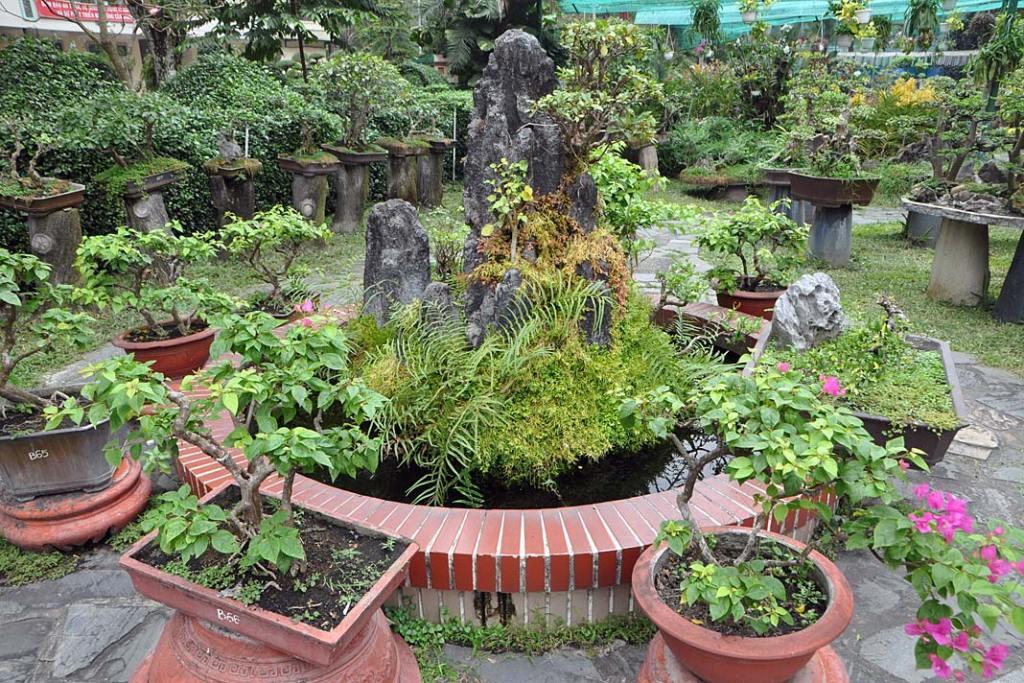 Tropikalne ogrody Sajgonu. Ogród bonsai zoczkiem wodnym iniewielką fontanną