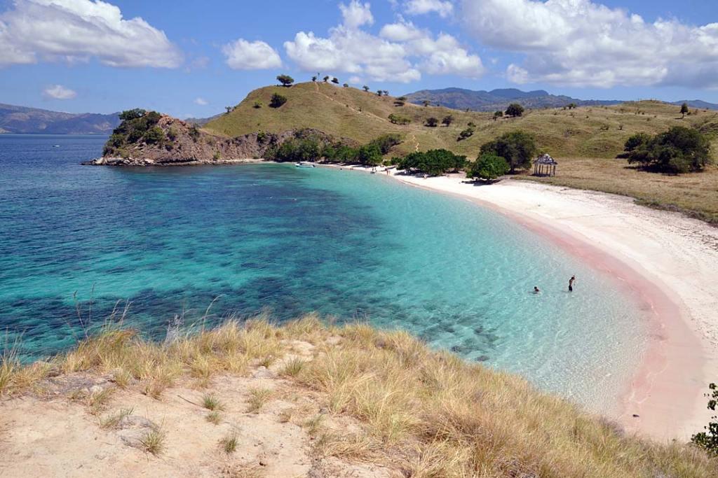 Różowa plaża na Komodo