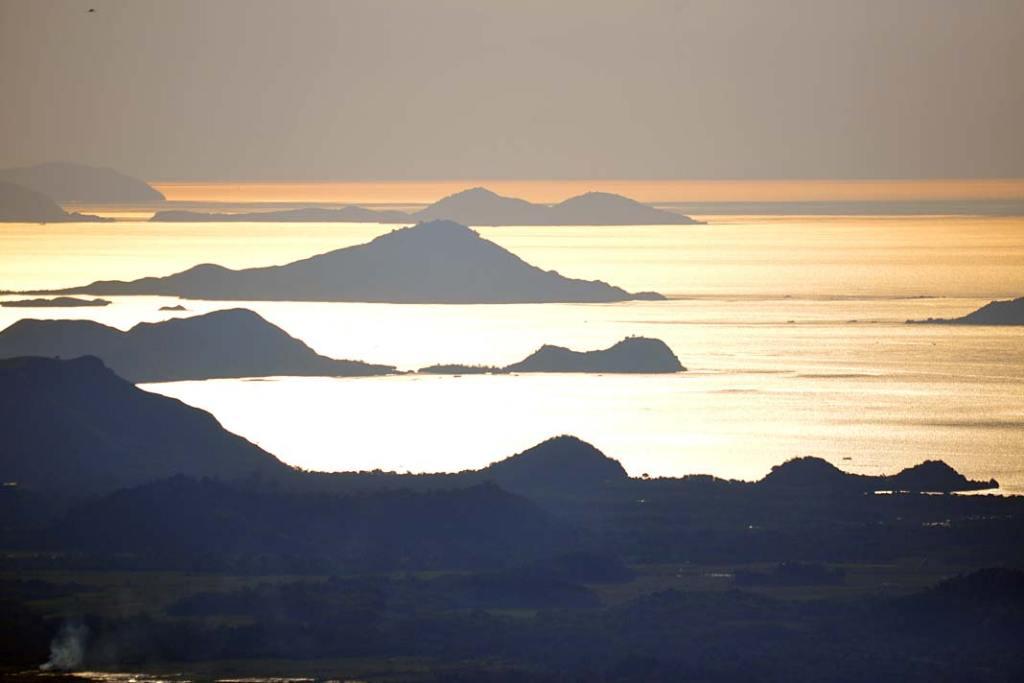 Warany zamieszkują pięć wysp należących do Indonezji (Komodo, Rinca, Gili Montang, Gili Dasami, Flores)