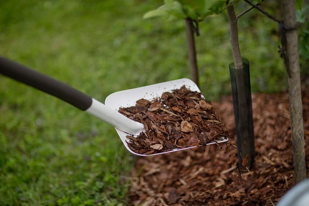 Jesienne prace w ogrodzie, ściółkazkory zabezpieczy rośliny przed mrozem. Fot. Fiskars